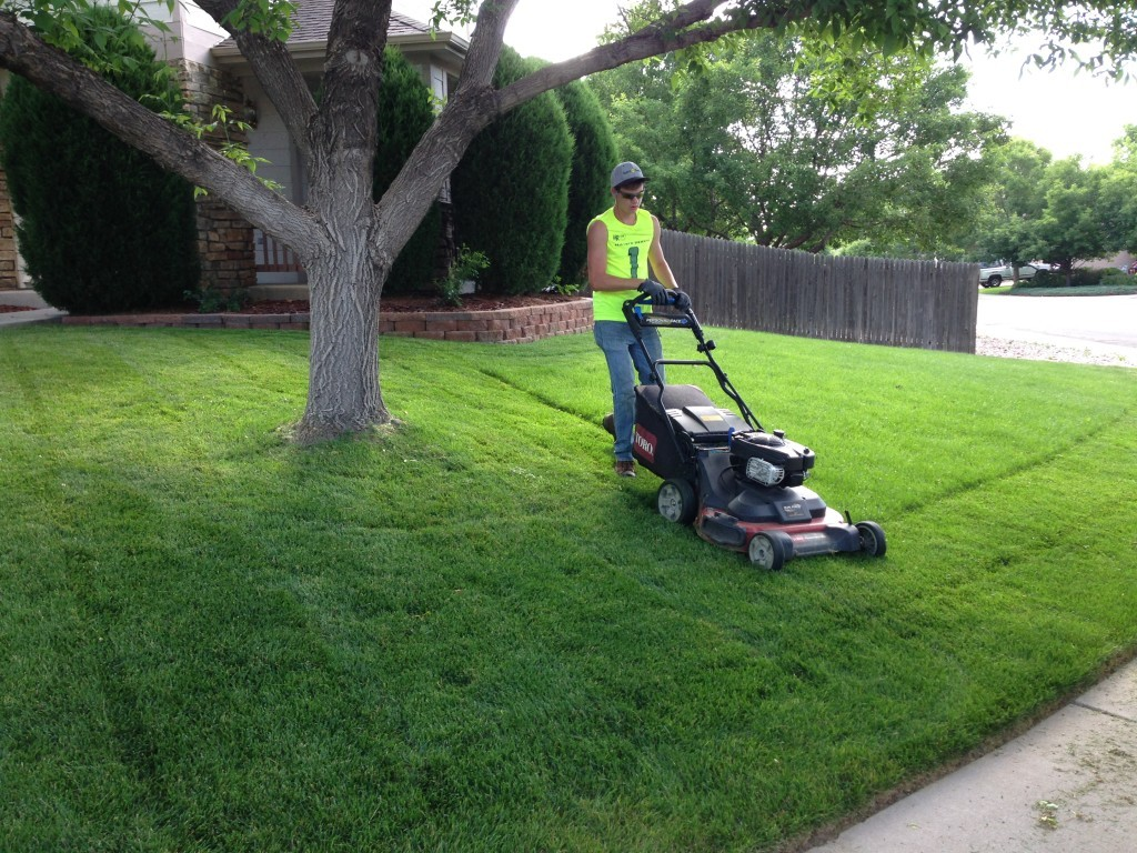 Lawn Service-Irving TX Landscape Designs & Outdoor Living Areas-We offer Landscape Design, Outdoor Patios & Pergolas, Outdoor Living Spaces, Stonescapes, Residential & Commercial Landscaping, Irrigation Installation & Repairs, Drainage Systems, Landscape Lighting, Outdoor Living Spaces, Tree Service, Lawn Service, and more.